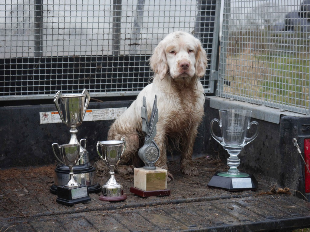 Rigg with trophies Web Page