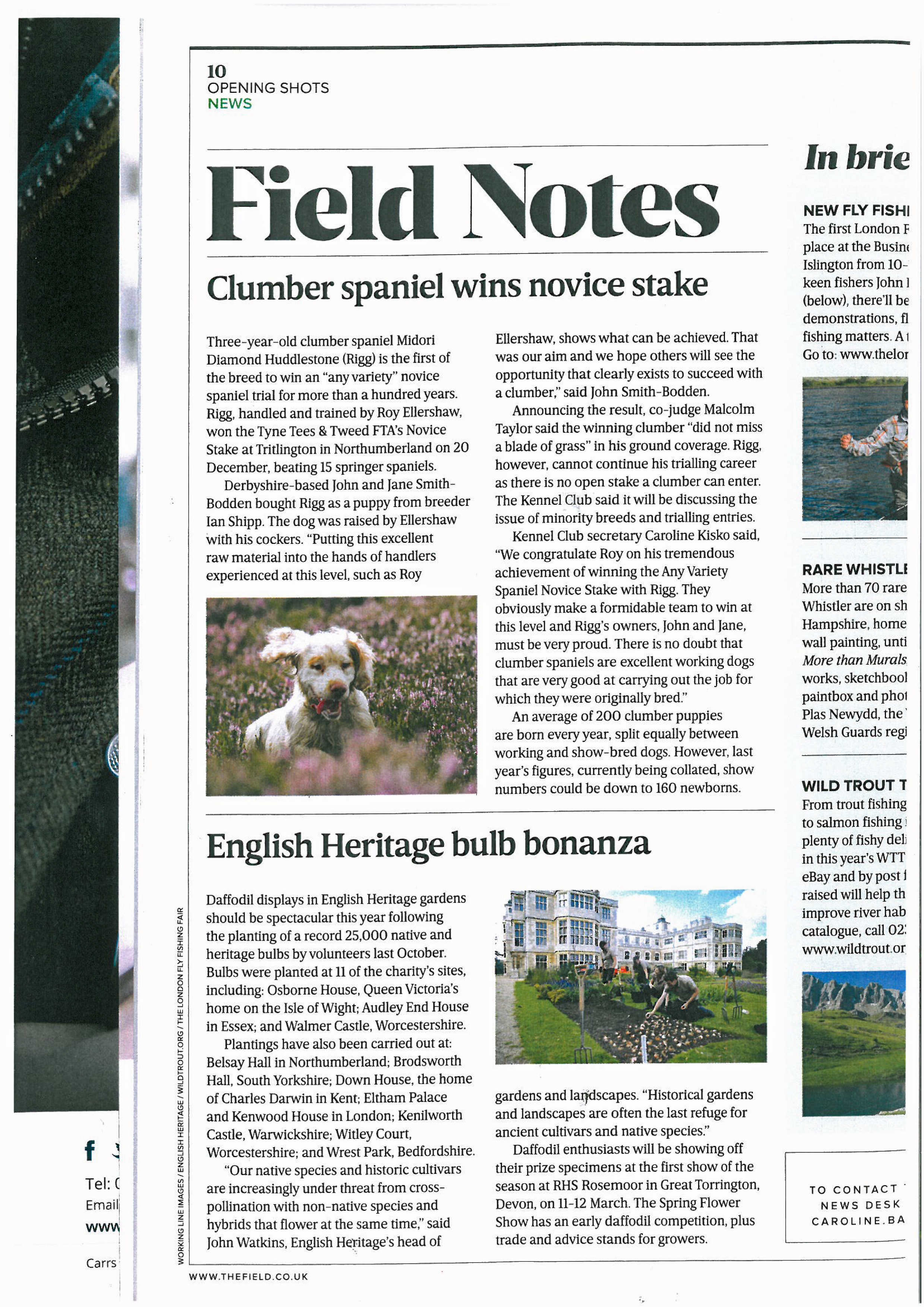 Rigg In The Field Mag-1